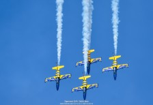 Zigermeet_2019_BalticBees-17