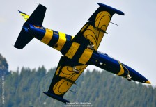 Zigermeet_2019_BalticBees-22